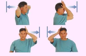 Картинки шейного отдела позвоночника человека