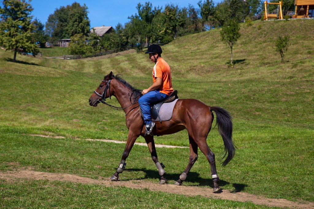 Можно ли ездить на лошади при остеохондрозе