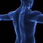 Новокаиновая блокада при остеохондрозе