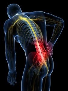 Боль в пояснице спины